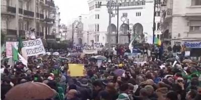 الجزائريون يحتجون ويطالبون بتنحي بوتفليقة على الفور