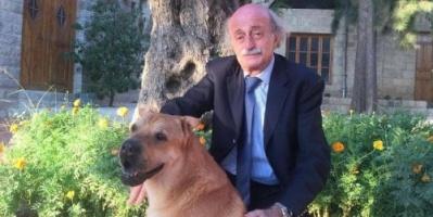 جنبلاط ناعيًا كلبه: وداعًا يا أغلى صديق
