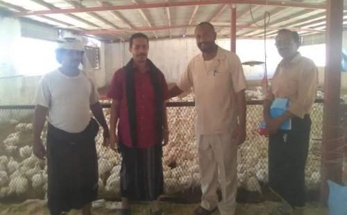 زيارة تفقدية لمزارع الدواجن بمديريتي عتق والروضة بشبوة للتأكد من السلامة المهنية (صور)