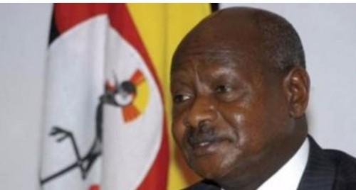 أوغندا: اختطاف سائح أمريكي وسائقه جنوب غربي البلاد