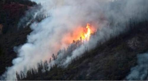 البرتغال: بدء الاستعدادات بجمع أعداد قياسية من قوات ومعدات الإطفاء