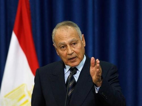 أبو الغيط: إيران وتركيا هما أكبر تحديان يواجهان العالم العربي