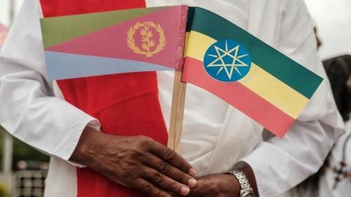 الزعتر: تركيا تحاول تخريب المصالحة الإثيوبية الإريترية