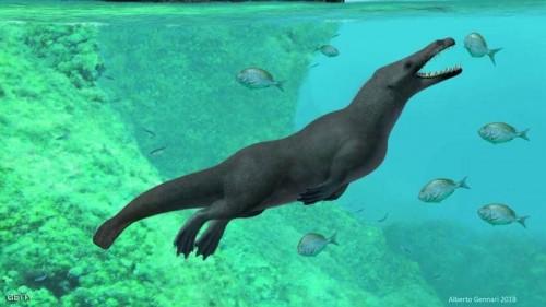 العثور على حوت برمائي بأربعة أرجل عاش قبل 43 مليون عام