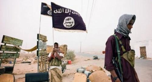 الحزام الأمني يشن حملة أمنية لملاحقة عناصر تنظيم القاعدة في أبين