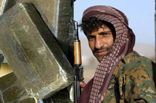 تجارة الحشيش تشعل خلافات بين قيادات الحوثي