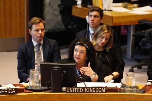 السفيرة كارين بيرس توجه دعوة إلى أطراف الصراع في اليمن