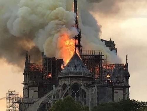 كيف استقبل نجوم الوطن العربي خبر حريق كاتدرائية نوتردام؟