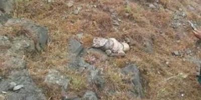 تفاصيل العثور على جثة طفل بعد أيام من اختفائه بتعز