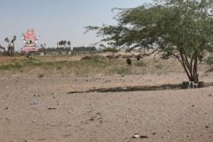 مليشيات الحوثي تواصل قصف واستهداف مواقع العمالقة في الجبلية بالحديدة