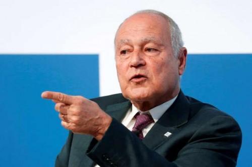 أبو الغيط: الدعم العربي للقضية الفلسطينية وركائزها المعروفة ثابت