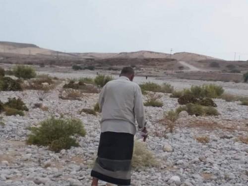 دراسة خام الركام الودياني بمنطقة تبالة في حضرموت