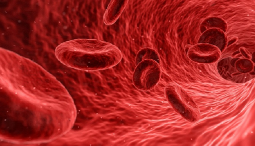 """دراسة علمية: اختبار الدم البسيط يكشف الإصابة بـ""""ألزهايمر"""""""
