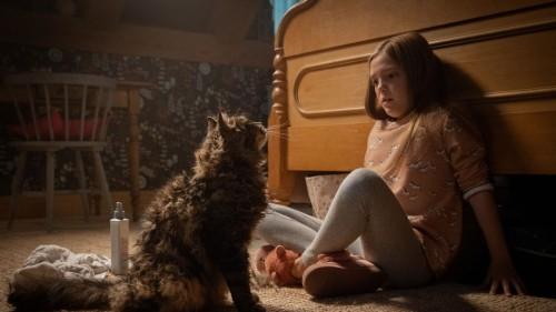فيلم الرعب Pet Sematary يحقق 103 مليون دولار