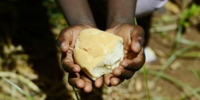 منظمة أممية تحذر: 52 مليونا يعانون نقص التغذية بالشرق الأدنى وشمال أفريقيا