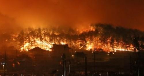 السيطرة على 155 حريقًا خلال 24 ساعة بالغابات الروسية