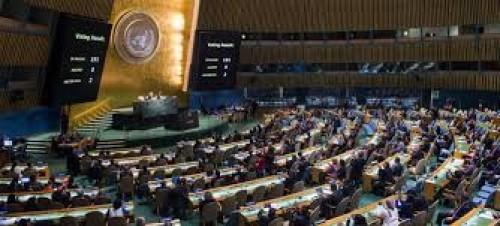إعلامية: الأمم المتحدة تدير أزمة اليمن لصالح الحوثي