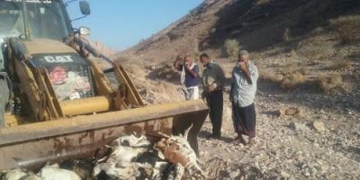 مكتب الزراعة بشبوة يطلب إرسال وحدة ترصد بعد نفوق ماشية