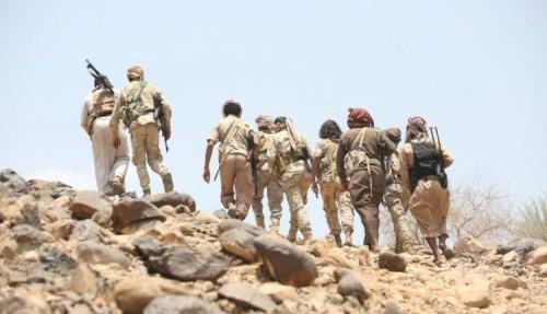 الجمل: نشر أسماء شهداء وجرحى الجنوب يفيد العدو في تقييم عملياته العسكرية