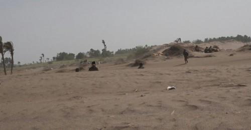 مليشيات الحوثي تستهدف المواطنين ومواقع العمالقة في الجبلية بالتحيتا