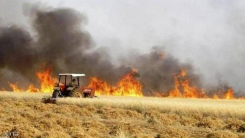 272 حادثا بسبب حرائق الأراضي الزراعية خلال شهر واحد بالعراق