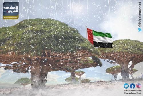 جهود كبيرة من خليفة الإنسانية لإغاثة متضرري الأمطار بسقطرى (إنفوجراف)