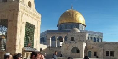 139مستوطنًا يقتحمون المسجد الأقصى وسط حراسة الاحتلال