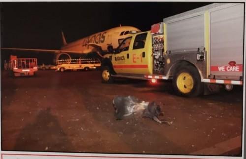 اللقطات الأولى لأضرار الاعتداء الحوثي على مطار أبها السعودي (صور)