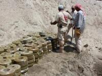 بفعل جرائم الحوثي..مزارع اليمنيين الخصبة تتحول إلى حقول قاتلة