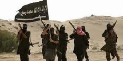 القبض على عنصر خطر بتنظيم القاعدة في تريم بحضرموت