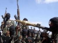 مقتل 15 جنديا نيجيريا في هجوم شنته بوكو حرام الإرهابية