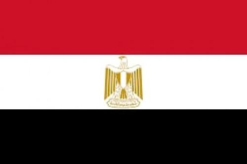 73 عامًا من الصمود.. المصريون يحتفلون بعيد الجلاء