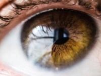 """ما لا تعرفه عن بكتيريا العين """"المفيدة"""""""
