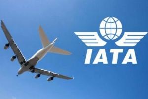 الاتحاد الدولي للنقل الجوي يدين استهداف الحوثيين مطار أبها