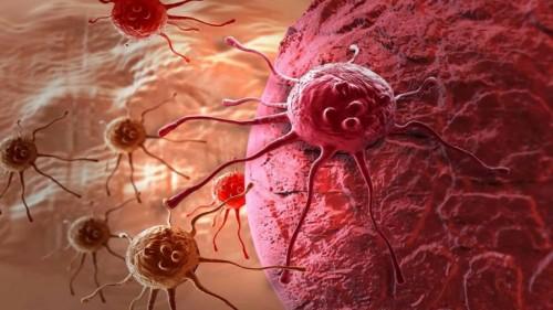 تقنية جديدة تجبر الخلايا السرطانية على الانتحار