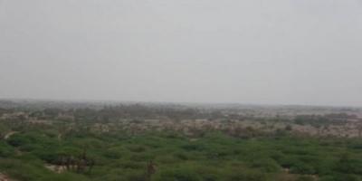 مليشيات الحوثي تحشد قواتها مجددا نحو الجبليةً