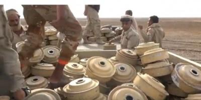 الفرق الهندسية للقوات المشتركة تتلف 600 لغم حوثي في الحديدة (فيديو)