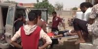 قصف مدفعي لمليشيا الحوثي على مدينة حيس (فيديو)
