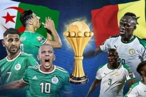 اليوم.. منتخب الجزائر يواجه السنغال في نهائي بطولة أمم أفريقيا
