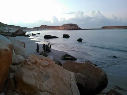 لحماية السلاحف النادرة من الذبح.. فريق من خفر السواحل يزور محمية شرمة يثمون (صور)