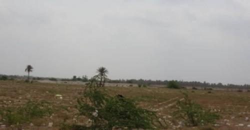 مليشيا الحوثي تعاود استهداف مواقع القوات المشتركة بالجبلية