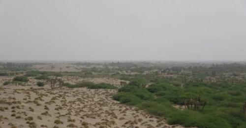 القوات المشتركة تتصدى لهجوم حوثي في الجبلية وتكبدهم خسائر فادحة