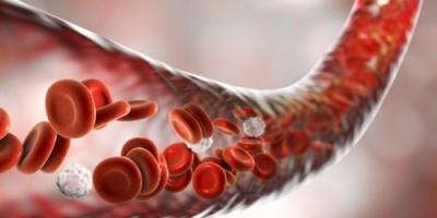 علماء يكتشفون بكتيريا جديدة تغير فصيلة الدم