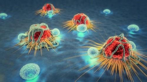 """""""السرطان"""" يستخدم إشارة هامة لتعزيزه ضد أي هجوم مناعي.. تعرف عليها"""
