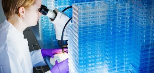 """ابتكار خلايا صناعية لعلاج القاتل الصامت """"السرطان"""""""