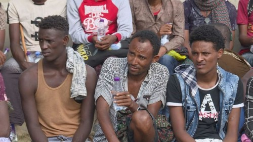 القوات السعودية تحرر 81 إفريقيًا من قبضة عصابة الاتجار بالبشر الحوثية بصعدة (صور)