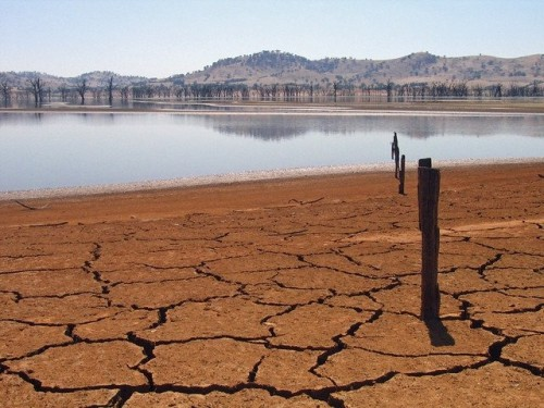 تقرير دولي يكشف.. الشرق الأوسط الخاسر الأكبر من ندرة المياه.. والكويت أكثر تعرضًا للجفاف