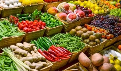 ارتفاع حجم صادرات مصر الزراعية إلى 4.6 مليون طن