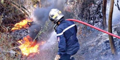 إخماد 117 حريقًا اندلعت خلال يومين فقط بالجزائر
