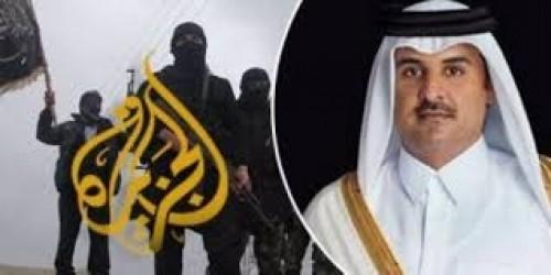 """الربيزي: 3 قضايا دافعت فيها """" الجزيرة """" عن """" الإخوان """" وانتهت بالفشل"""